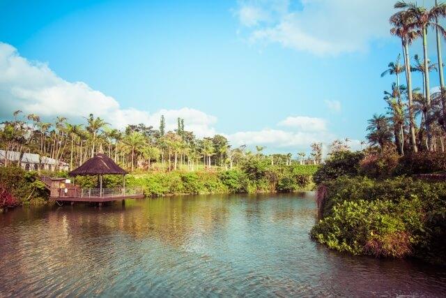 『東南植物楽園』水上楽園エリア