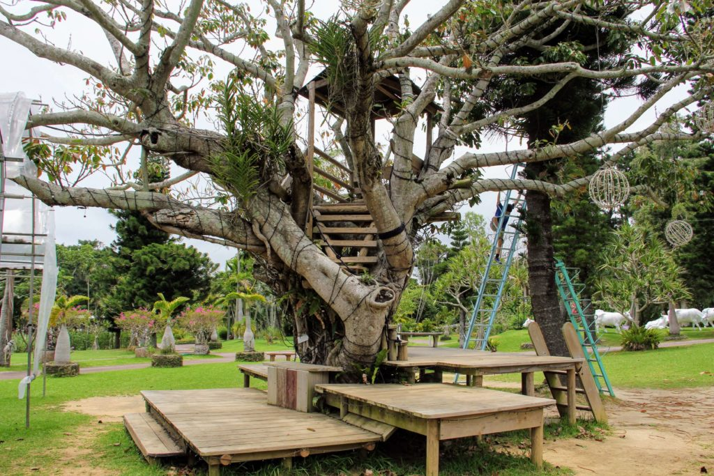 『東南植物楽園』タコノキステーションの近くにあるツリーハウス