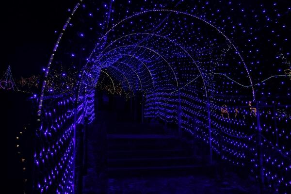 『小谷・美ら石坂 イルミネーション』光のトンネル