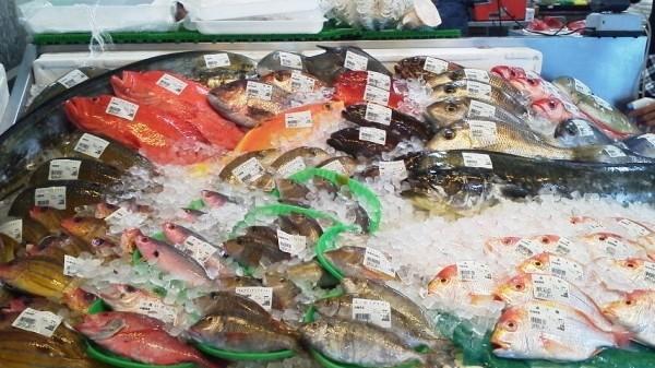 糸満漁業協同組合「お魚センター」