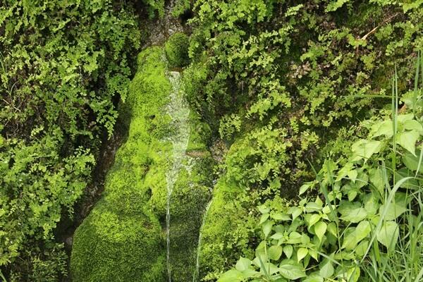 垣花樋川 色々なところから流れる名水