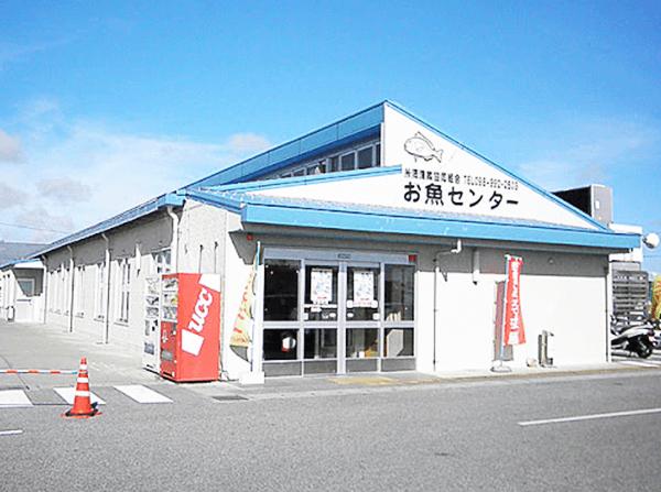 糸満漁業協同組合「お魚センター」店頭写真