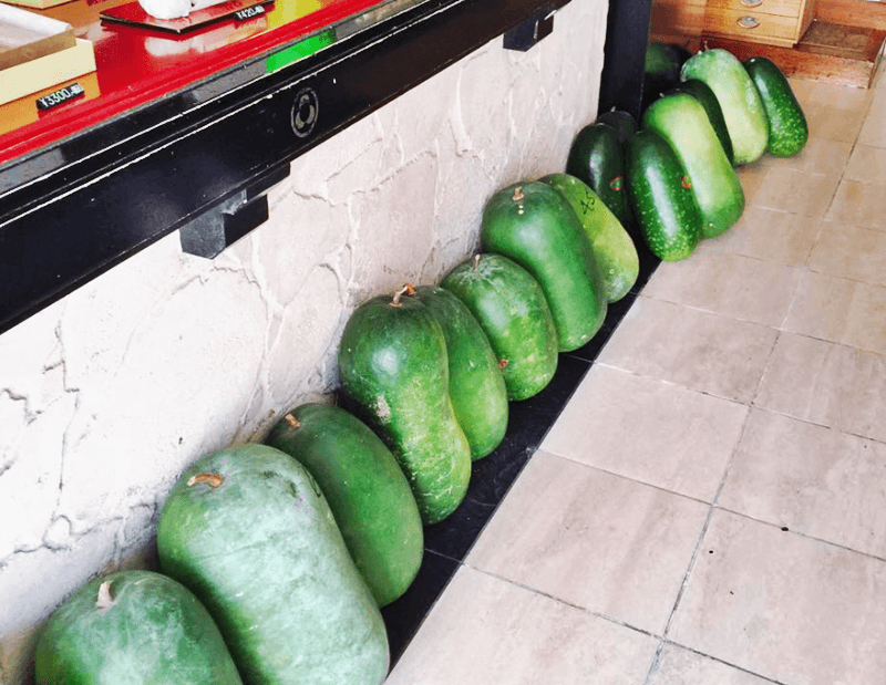 謝花きっぱん店 店内にたくさん並べられている冬瓜