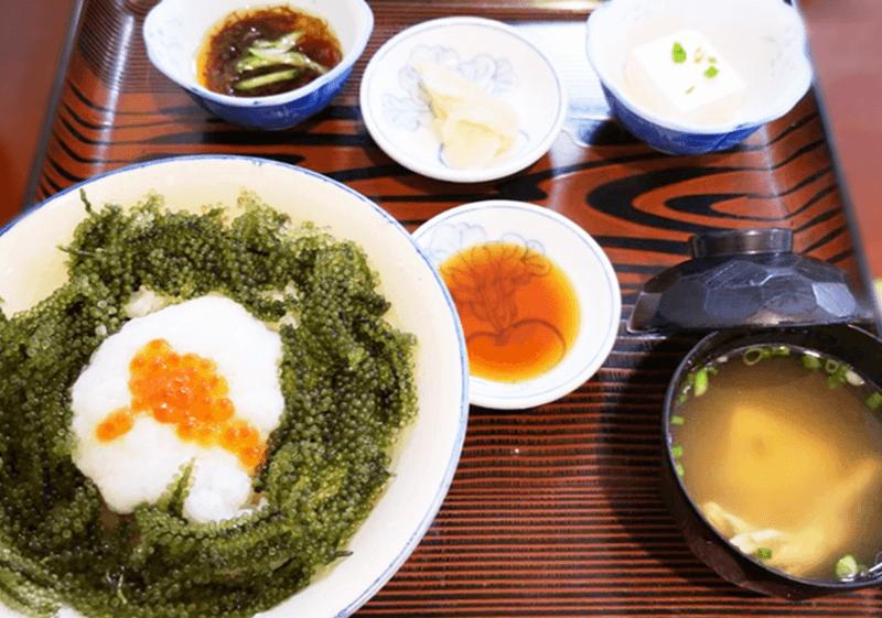 仲泊海産物料理店 海ぶどう丼定食